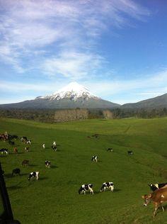 Mount Rainier, Mountains, Nature, Travel, Image, Naturaleza, Viajes, Destinations, Traveling