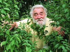 Dr David Bellamy - Inspiration of my early years!