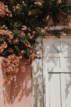 blush floral vibes
