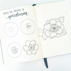 "8,024 Likes, 64 Comments - Liz • Bullet Journal (@bonjournal_) on Instagram: ""How to draw a Gardenia flower. Gardenias have always looked like a little spiral flower inside of…"""