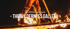 Wilderness Festival 2016 Gallery