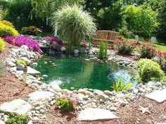 Love the landscaping and use of stone and wood chips on the border of the pond.