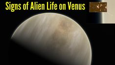 Signs of Alien Life on Venus, as Astronomers detected Phosphine in Venus...