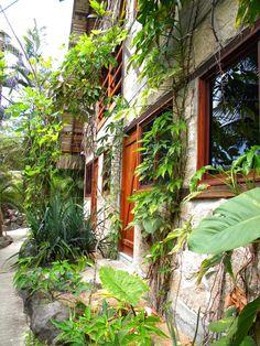 Ecuador, Beach Trip, Tropical, Homeland, Exterior Design, Beautiful Places, To Go, Adventure, Landscape