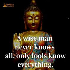 Fool knows everything.