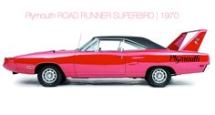 Plymouth ROAD RUNNER SUPERBIRD   1970
