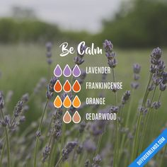 Relax and Unwind Essential Oil Diffuser Blend - aromatherapy