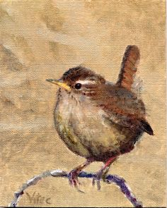 wren painting.... this one i might have to frame
