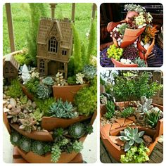 Flowerpot accidentally broke do not rush to throw away, a little a little effort can bring unexpected results!