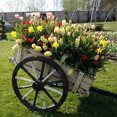 idéias-casa-jardim-reutilizar