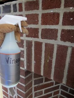 what to use to clean up fireplace bricks | of water and vinegar then use a rag to clean off any residue so the ...