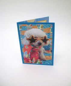 Mozart looks like a movie star.  Blank Dog Card Poodle Photograph Card Dog Greeting by Lillyzcardz, $4.00
