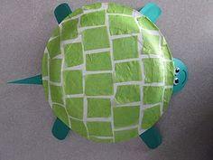 paper plate tortoise