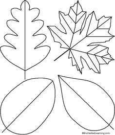 Leaves Template for Craft