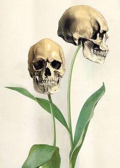 scary drawing art creepy horror Grunge green flower skull nature original bones Alternative bone goth gothic tulip