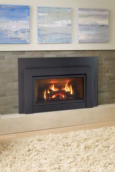 natural gas fireplace insert white freestanding gas regency e33 gas fireplace insert corner electric fireplace cast iron 24 best inserts images on pinterest fireplace inserts