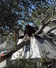 Lessons Learned from 9 Days Without Power (he was even a prepper, interesting read)