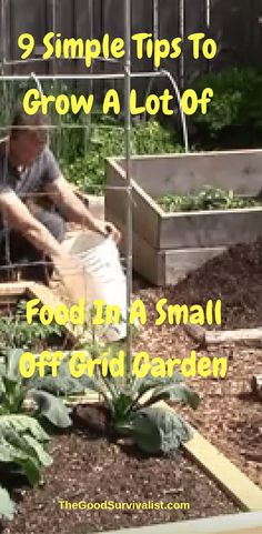 Off Grid Living Tips Most people understand that organic food is the best way to go but feel it's to expensive. Here's your opportunity to grow your own organic food. Watch the video below now to get started.