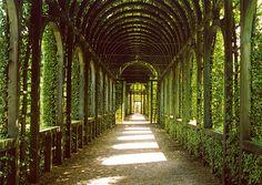 Palais Het Loo, Netherlands by UltraPanavision, via Flickr  Bersån innefrån