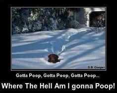 Gotta poop, gotta poop, gotta poop... Where the Hell am I gonna poop?