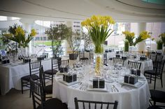 Yellow, green, and white centerpieces for modern wedding. Lemons inside vase.   carlycylinder.com