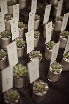 Succulent seating cards that can later turn into wedding favors. Winter 2012 Client wedding succulent escort cards « Modern LA Weddings, Photo by AndySeo Studio Succulent Wedding Centerpieces, Succulent Favors, Creative Wedding Favors, Wedding Favor Tags, Gift Wedding, Wedding Bells, Wedding Places, Wedding Place Cards, Planners