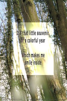 Bogman's Lyrics Quotes - - The Sundays - Here's Where The Story Ends Walking In The Rain, Lyric Quotes, Music Lyrics, Just Go, Make Me Smile, Letter Board, Songs, Writing, My Love