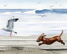 DACHSHUND At The Beach Art Print Signed by Watercolor Artist DJ Rogers