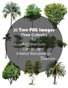 02- 20 Tree Png Images for architecture, landscape, interior renderings dzzyn5