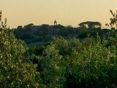 Far away from Paris for the week-end: Umbria, Italy, and its magic light (3) (à Lugnano in Teverina)
