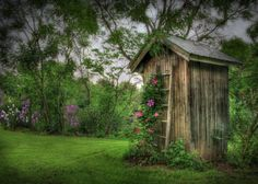 """.Old homestead backhouses were typically screened by a spreading lilac and """"going out to smell the lilacs"""" has long been a useful euphemism in our family."""