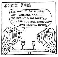 Shar Peis Share...