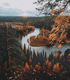 Outdoors Finland: Stunning Adventure Photography by Julia Kivelä Ou. - Outdoors Finland: Stunning Adventure Photography by Julia Kivelä Outdoors Finland: Stu - Adventure Photography, Autumn Photography, Landscape Photography, Photography Hacks, Photography Business, Autumn Aesthetic Photography, Computer Photography, Photography Colleges, Retro Photography
