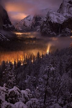 Yosemite National Park (California) snow, winter, white, gold, sun reflection.