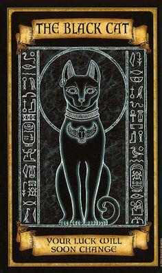 Madame Endora Fortunetelling Cards  Divination.....