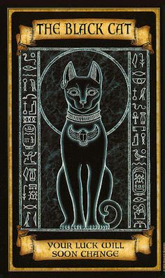 Tarot Card The Black Cat | By: Madame Endora Fortunetelling Cards  Divination.....