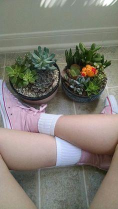 ☪ pinterest || @kaylahickok ☪ Art Hoe Aesthetic, Plant Aesthetic, Echeveria, Cactus, Bonsai, Plants Are Friends, Terrarium Plants, Flowers Nature, Cacti And Succulents