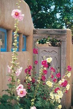 Mexican architectural heritage and beautiful landscaping in New Mexico.