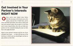 Cat's advice 2