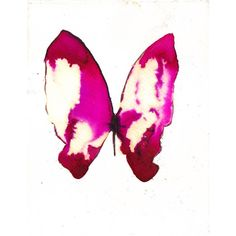 fuchsia pink butterfly white. original watercolor painting ($31) ❤ liked on Polyvore