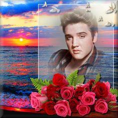 Elvis Presley photo art - rainbow sunset with roses