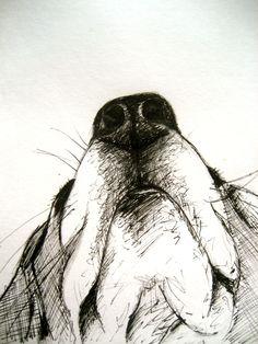 Dog Art, Dog Breed Beagle Pen & Ink facebook.com/michellecampbellart