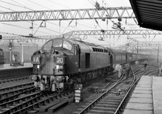 D326 (Great Train Robbery loco) approaches Crewe with the down 'Merseyside Express, 1/62. Diesel Locomotive, Electric Locomotive, Steam Locomotive, Train Room, Train Car, The Great Train Robbery, Electric Train, Train Engines, British Rail