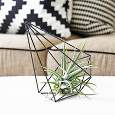 Minimalist geometric sculpture inspired by the Finnish himmeli. It is perfectly sized to hold an air plant for display. Each himmeli is crafted by hand