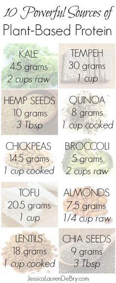 [What Everyone Ought To Know About Protein]