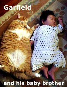 #Garfield and baby brother ;3