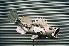 hubcap animal sculptures by ptolemy elrington (7)