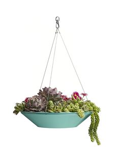 Vancouver-based Pot Inc: hanging planters | The Hover Dish, made from powder coated galvanized aluminum, comes in five modern styles and six colors. Planting depths range from 4 inches (like the Dolga, seen above, planted with a mix of succulents) to the 8-inch-deep Bosa, suitable for your favorite perennials or houseplants.