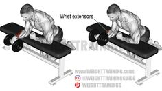 training workouts Dumbbell one-arm reverse wrist curl exercise Ultimate Ab Workout, Great Ab Workouts, Abs Workout Routines, Workout Guide, Gym Workouts, Power Training, Weight Training, Strength Training, Training Workouts