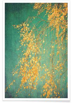 Inspiration Bilder für daheim (aber als Bild nicht als Poster) : Whispers of Yellow als Premium Poster von Ingrid Beddoes | JUNIQE